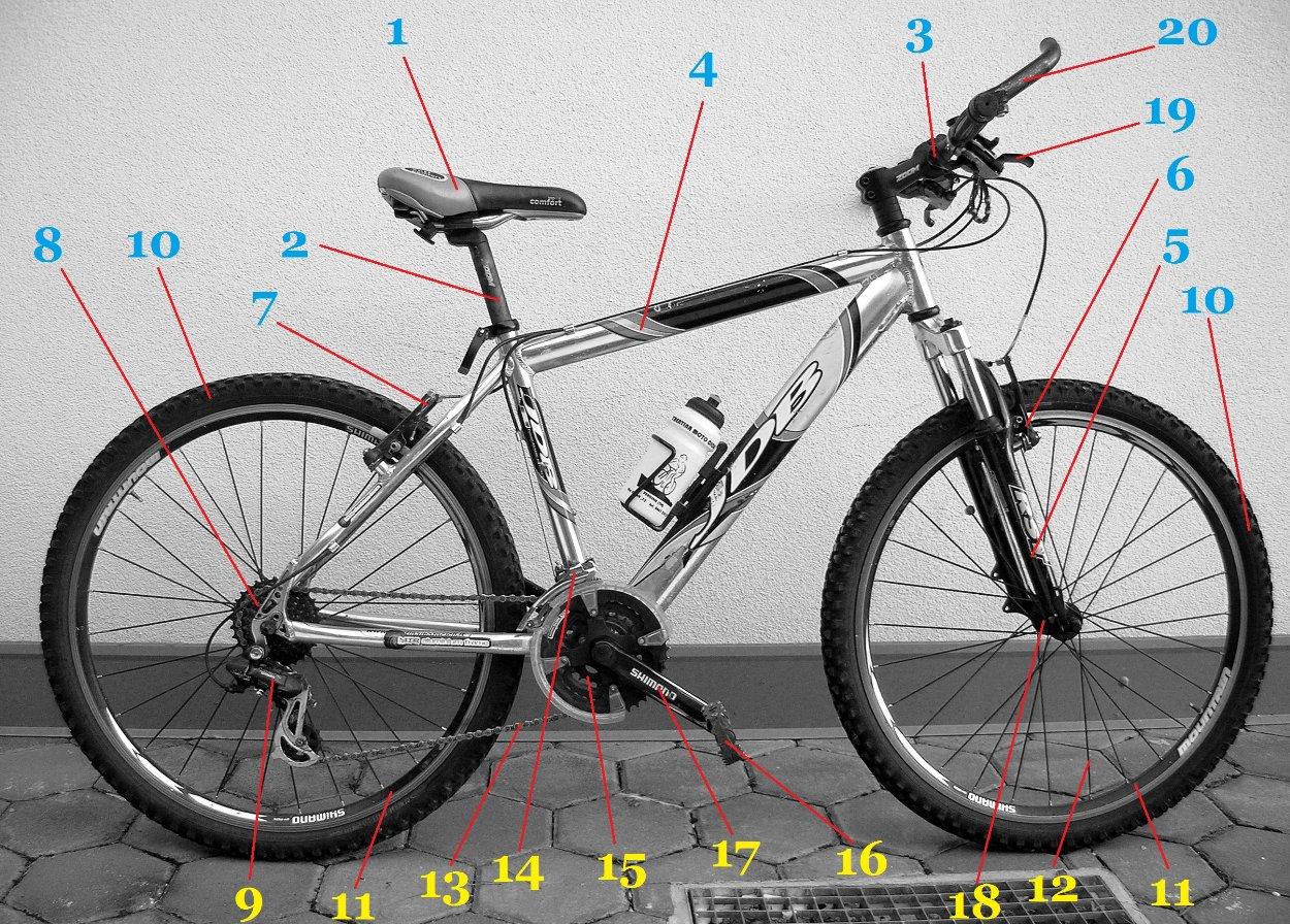 Anatomia della bici